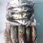 供应软壳蟹